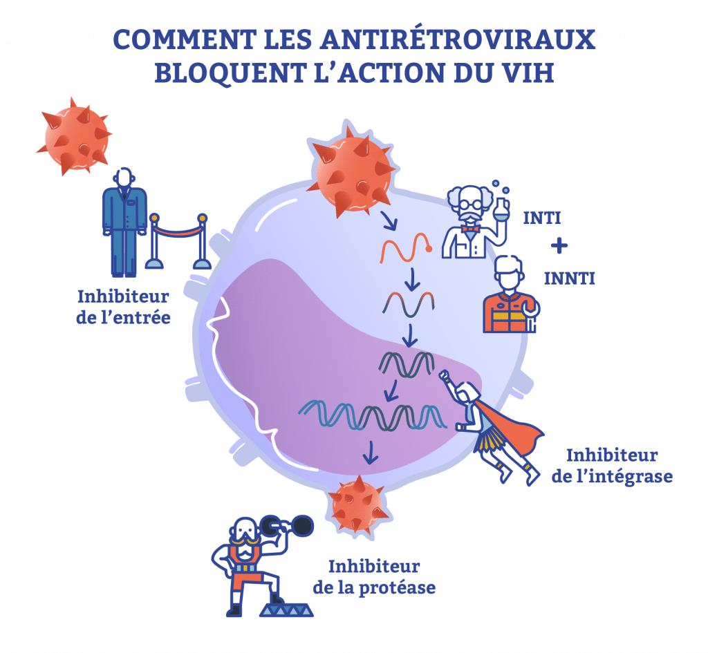 comment les antirétroviraux bloquent l'action du vih